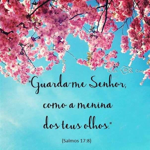 Guarda Me Senhor Como A Menina Dos Teus Olhos Salmos 17 8