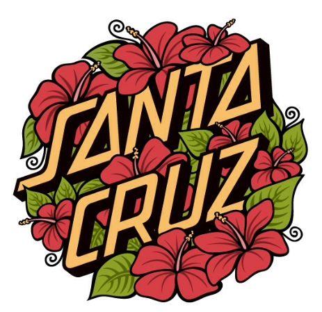 f589279fe Santa cruz logo | Snow, Skate, Surf | Santa cruz logo, Skateboard ...