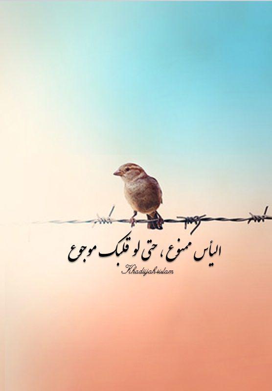 ﮩـ ط ــــــل Khadiijah4islam اليأس ممنوع حتى لو قلبك موجوع Arabic Quotes Quran Quotes Love Arabic Quotes With Translation