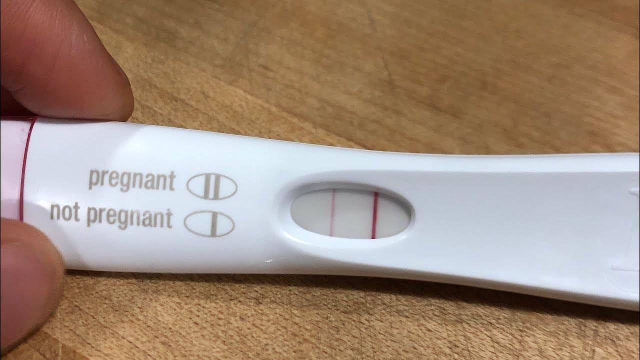 طرق معرفة الحمل في المنزل In 2020 Pregnant Cigar Cutter