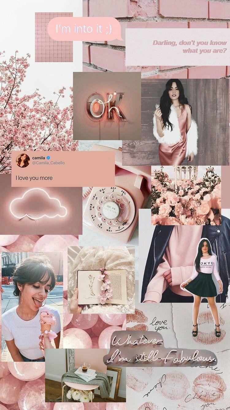 Camila Cabello Blush Aesthetic Wallpaper Allthingscc Aesthetic