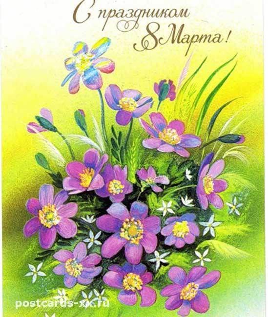 Cvety K 8 Marta Starye Sovetskie Otkrytki Muzej Otkrytki 20