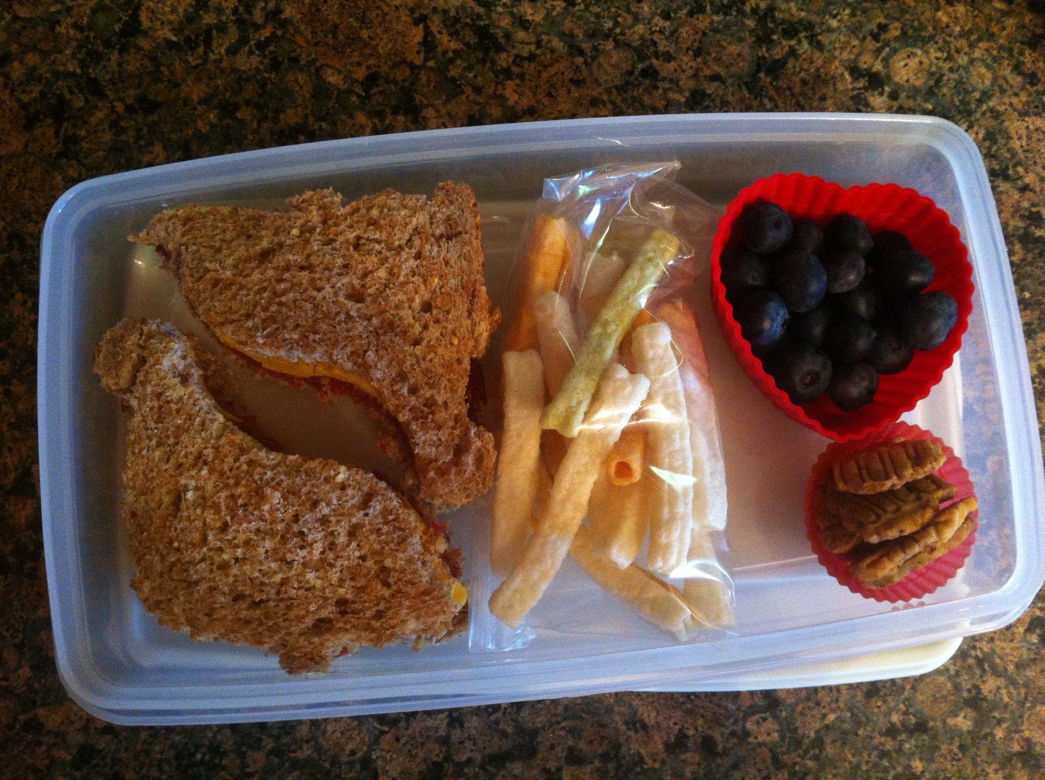 Sweet Amish Beef & cheese on Ezekiel bread, blueberries, veggie ...