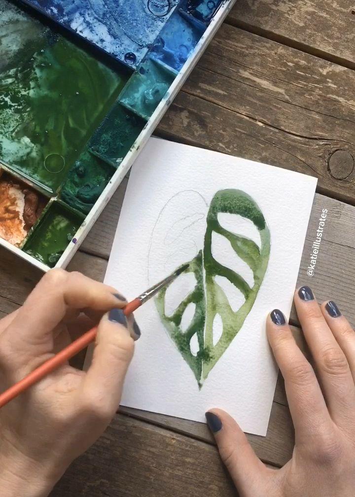 Watercolor Monstera Adensonii illustration video