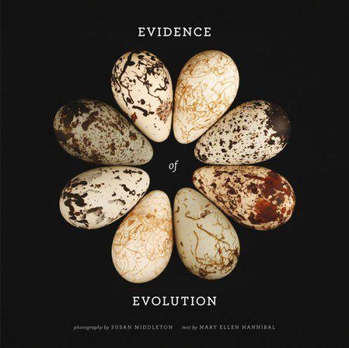 Evidence of Evolution by Mary Ellen Hannibal,http://www.amazon.com/dp/0810949245/ref=cm_sw_r_pi_dp_xlgwsb1EVC9VSSGJ