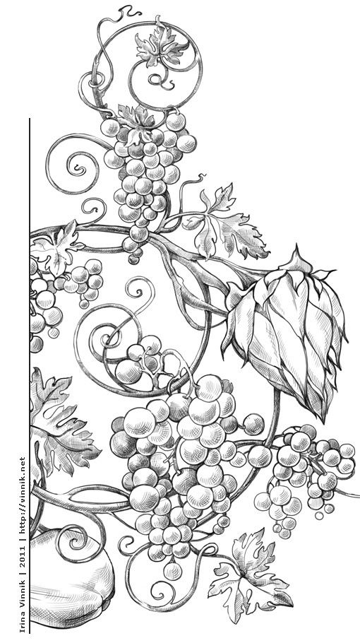 Diseno Adult ColoringColoring BooksColoring For AdultsColoring PagesGrape VinesGrape