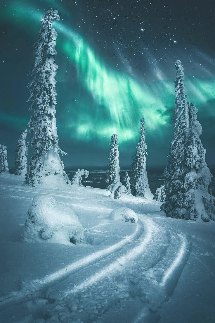 For more inspiration follow me on instagram @lapurefemme or click on photo to visit my blog! - #Blog #click #follow #Inspiration #Instagram #lapurefemme #northernlights #photo #Visit #photoscenery