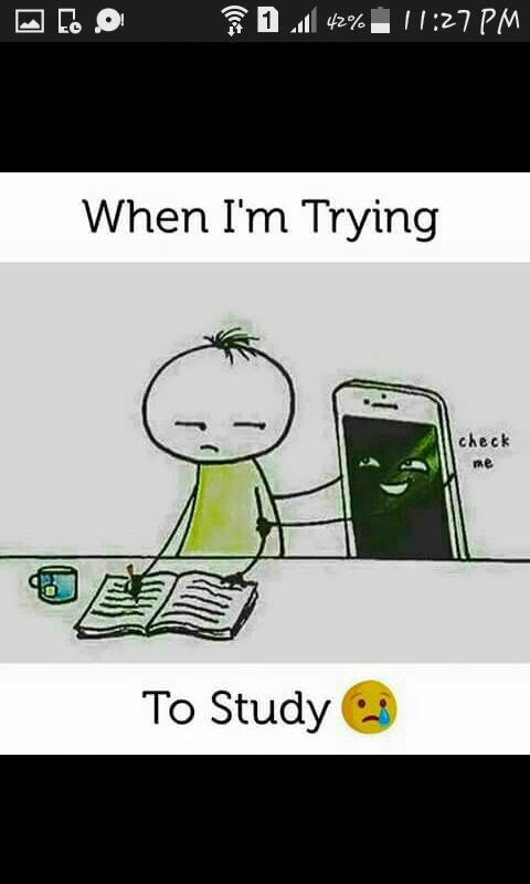 So True Exam Quotes Funny Studying Funny Exams Funny