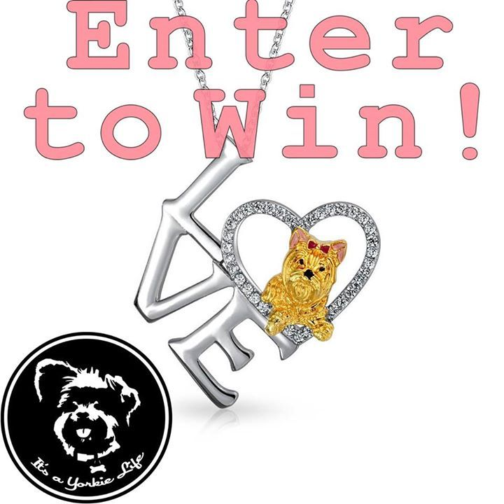 What do you thinkcan we grow our community 50000 likes?   ENTER TO WIN THIS GORGEOUS YORKIE NECKLACE   http://bit.ly/1PNfJiT