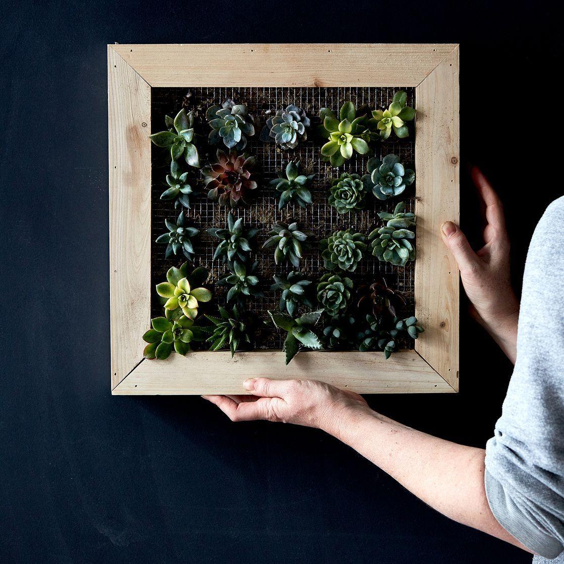 Marvelous DIY Vertical Succulent Garden