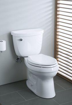 The Best Kohler Toilets Guide Kohler Toilet Bidet Toilet Combo Modern Style Bathroom