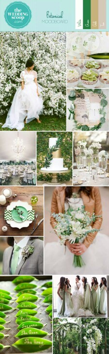 Back to Basics ;from The Wedding Scoop