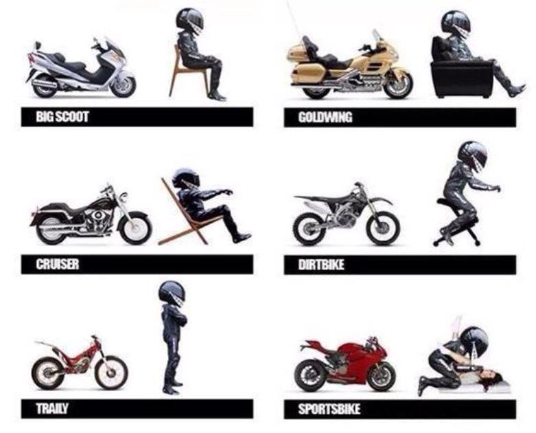 Sports Bikes Sport Bikes Bike Motorbikes