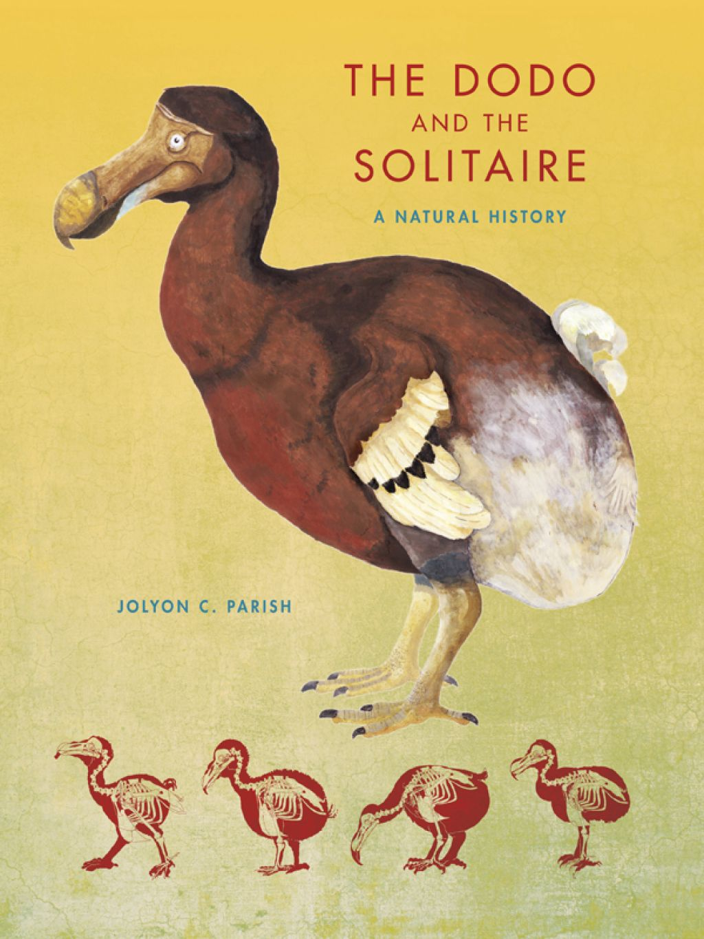 The Dodo And The Solitaire Ebook In