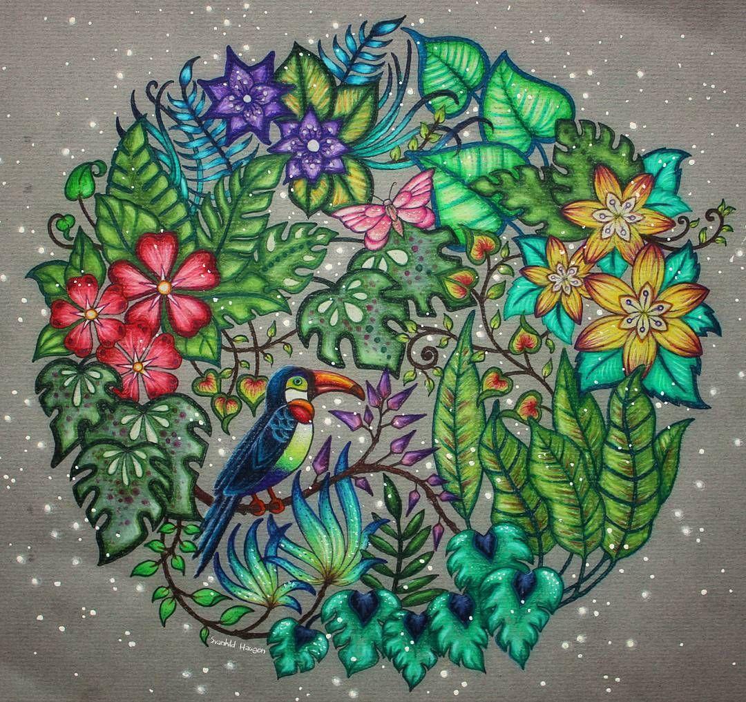 pin by silvia flor on meu livro de colorir pinterest