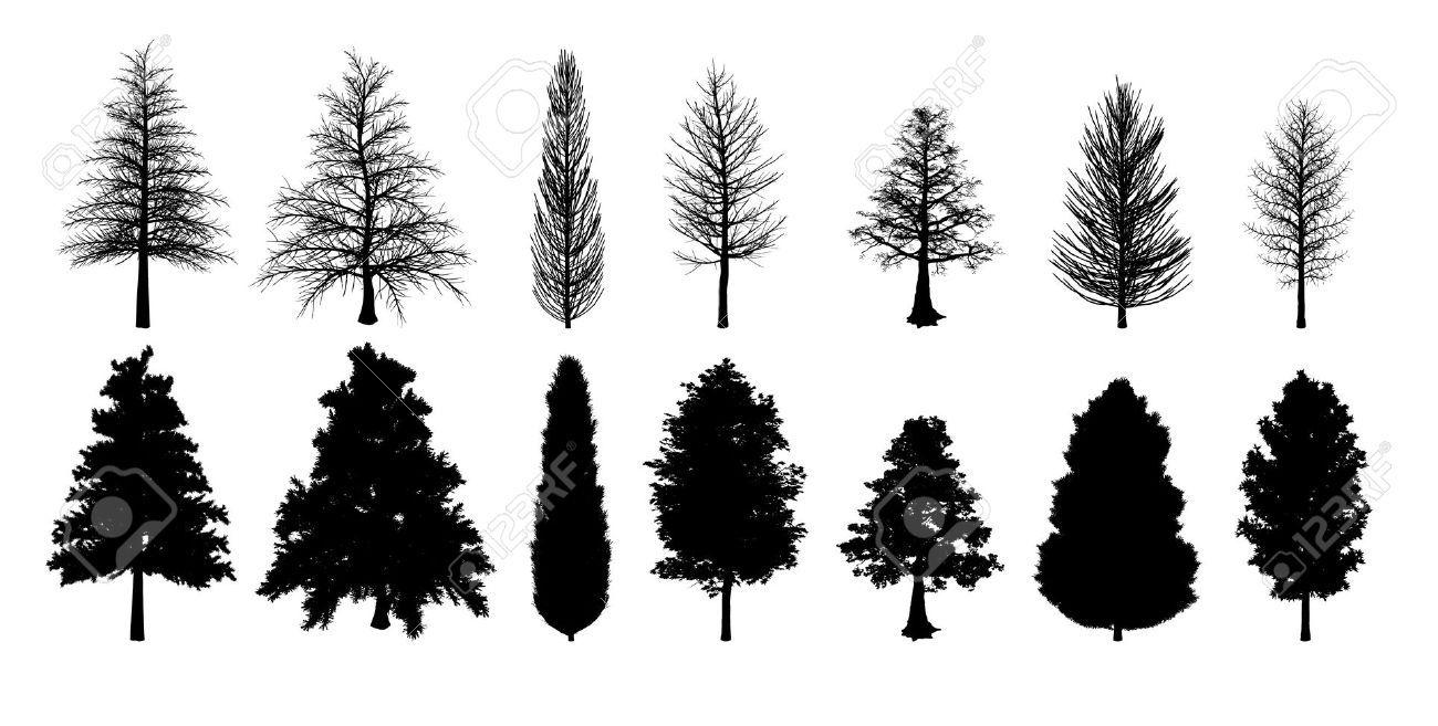 11136366-Collection-of-silhouette-trees-Stock-Vector-tree ...