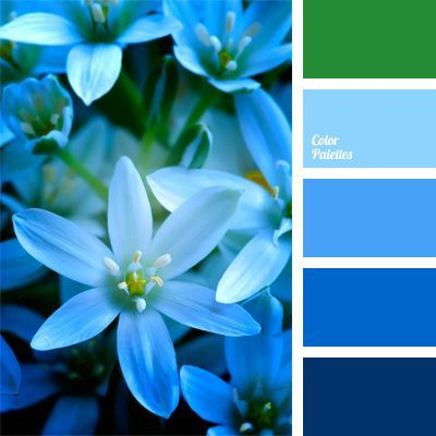 A set of cold azure hues is complemented with neutral green. Large bouquets of fresh colors of this palette will look natural when decorating rooms for wedding celebrations. This color solution is well-suited for interior decoration for corporate holidays and anniversaries. #palettenideen
