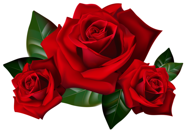 Red Roses Png Clipart Picture Rose Clipart Rose Art Red Rose Flower