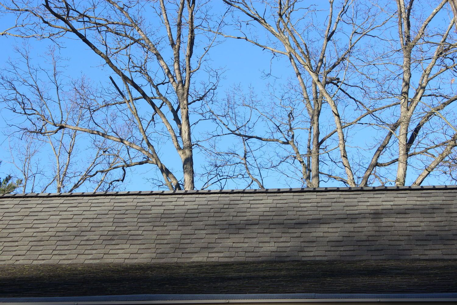 Zinc Strips On Roof To Help With Roof Moss Do They Work