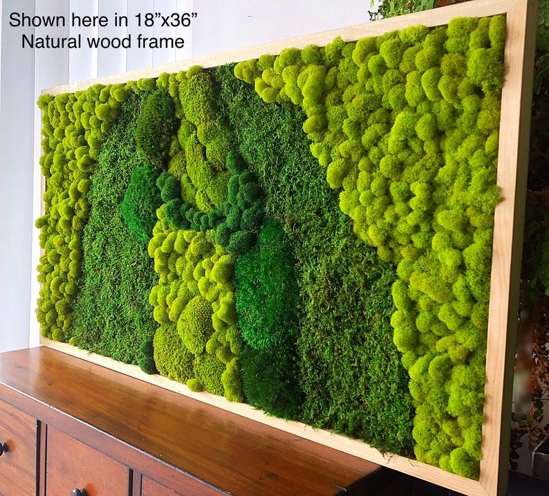 Moss Wall Art Moss Frame Green Wall Art Wall Decor Preserved