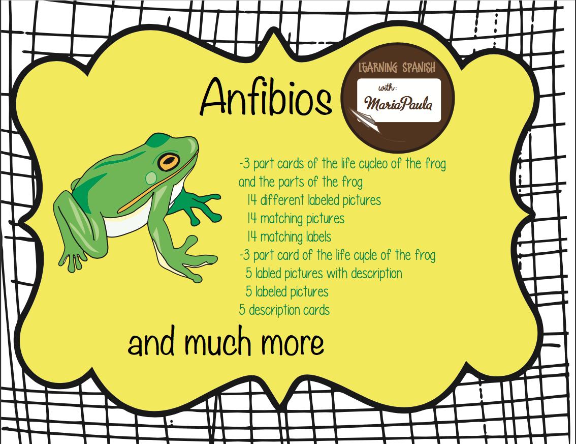 Amphibians Anfivios Bundle
