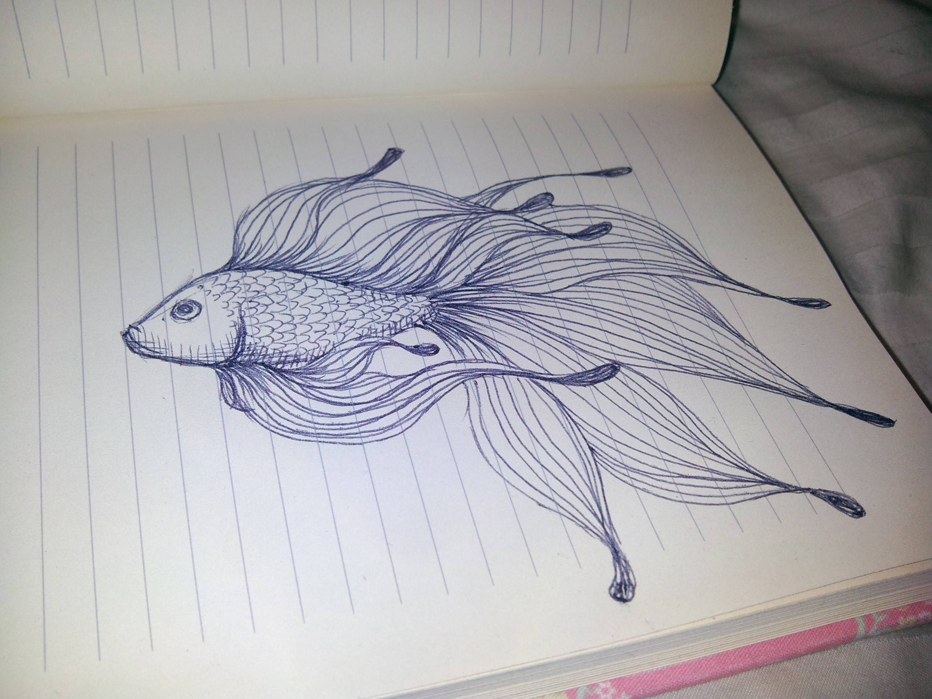 It is a picture of Dynamite Pretty Fish Drawing