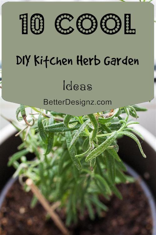 10 Cool DIY Kitchen Herb Garden Ideas