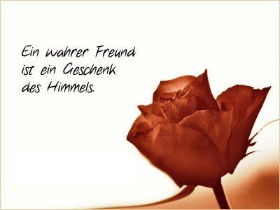 Ein Wahrer Freund Ist Ein Geschenk Des Himmels Sprüche