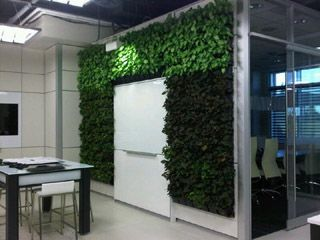 """our Dirtt """"Breathe"""" Living Wall. A living wall surrounding a """"Smart Board"""" Now that is smart!"""
