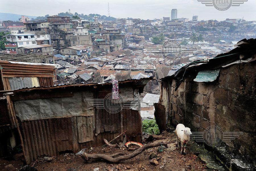 War in Liberia