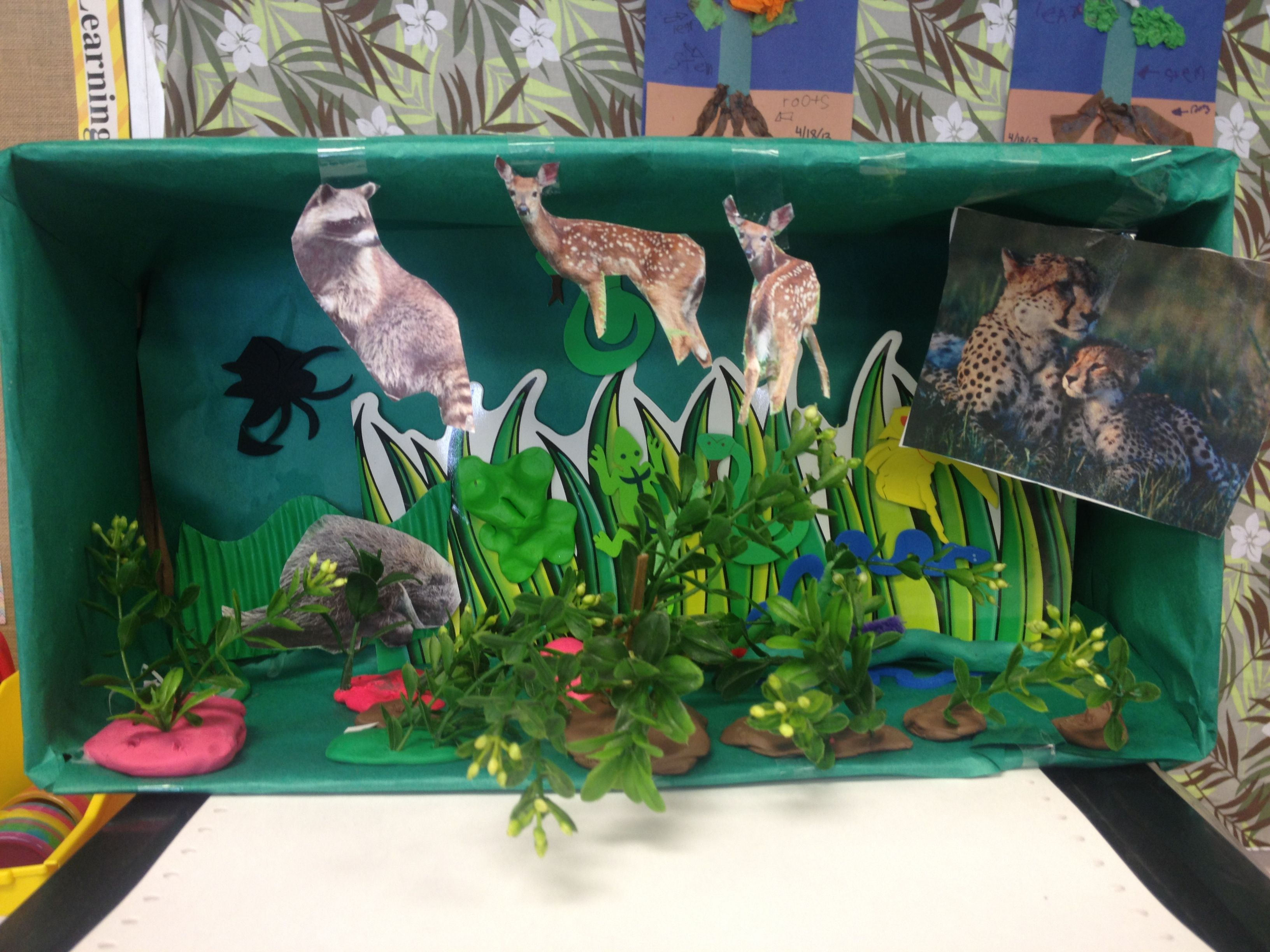 We Made A Forest Biome In Kindergarten