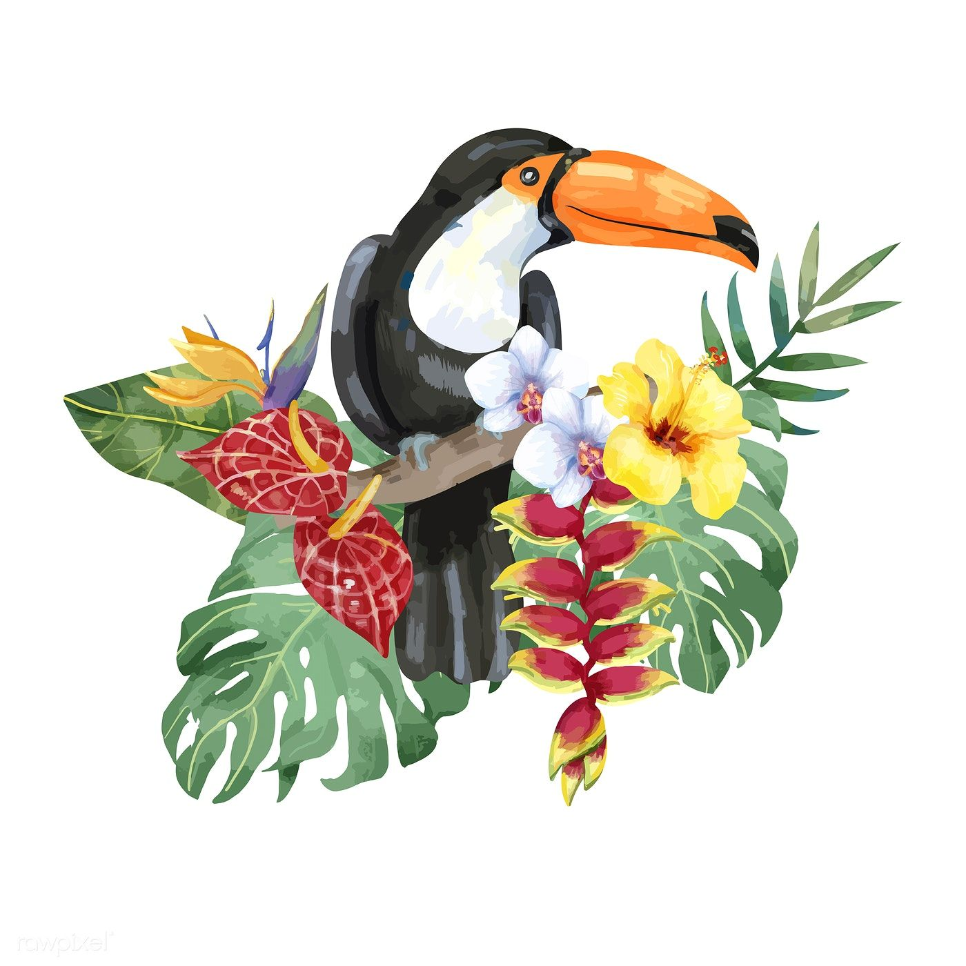 Download Premium Illustration Of Hand Drawn Toucan Bird With Tropical Tropical Flowers Illustration Tropical Illustration Toucan Art
