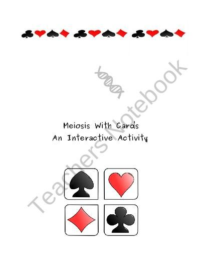 Meiosis Card Activity from Kristine Muellers Science on