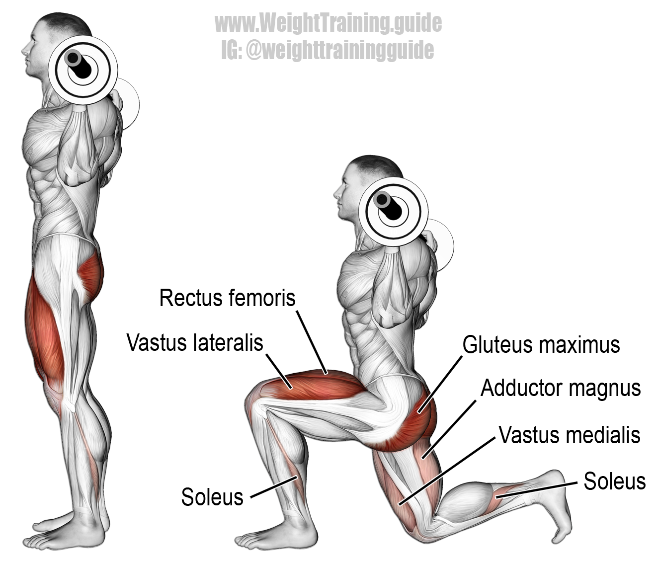Train Leg Muscles With These Efficient Exercises Manual Guide