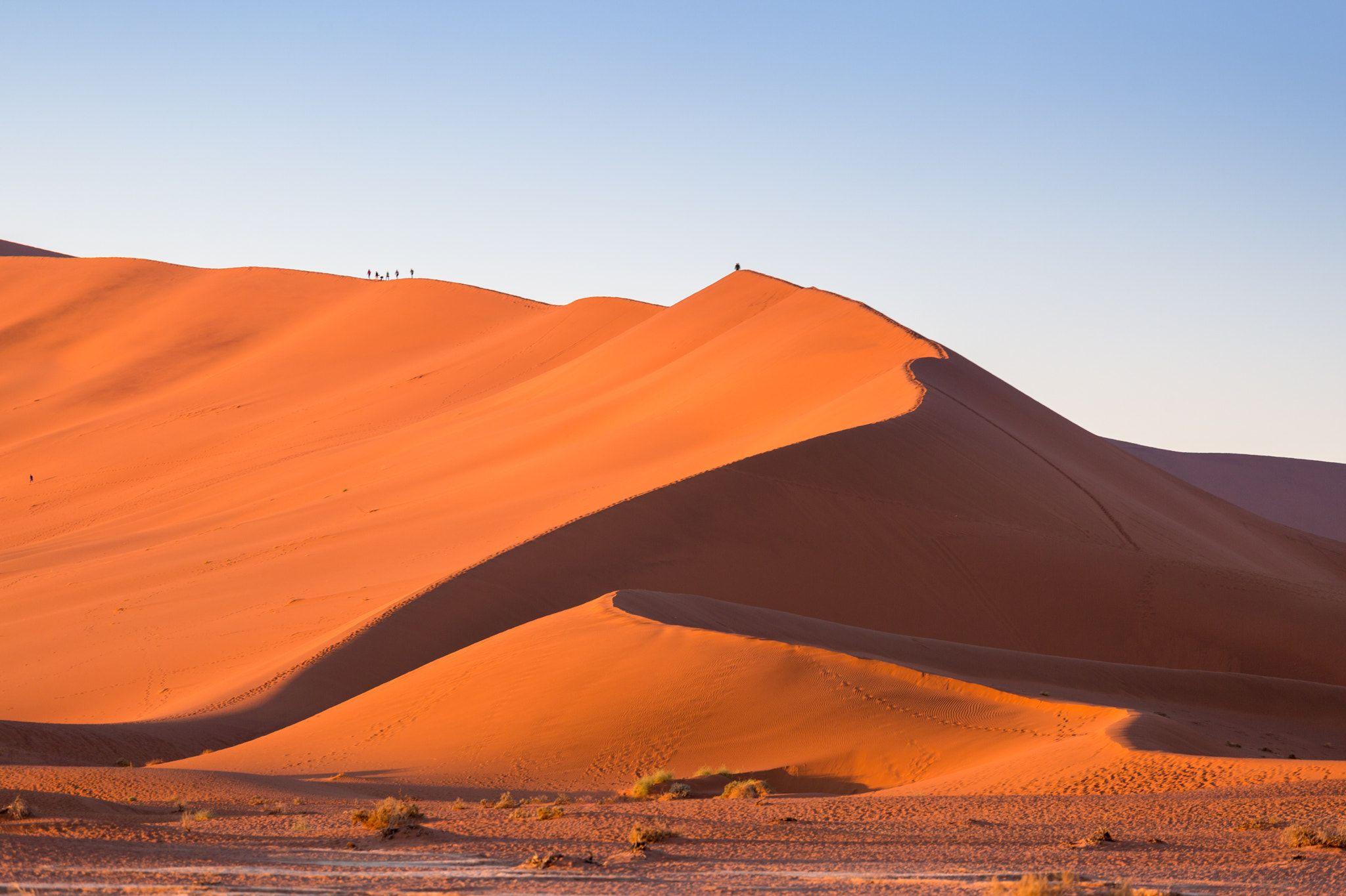 Namib Sossusvlei Big Daddy Dune At Sunrise Namib Desert