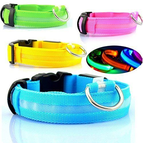 Led Dog Collar Led Dog Collar Glow Up Dog Collar For Safe Walking Large Pink Check Out This Great Product With Images Led Dog Collar Cat Pet Supplies Small Dog Collar