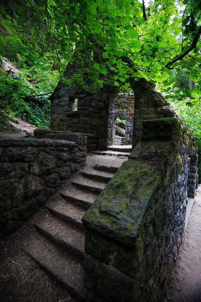 Outdoormagic The Witchs House Forest Park Portland By Mstraite