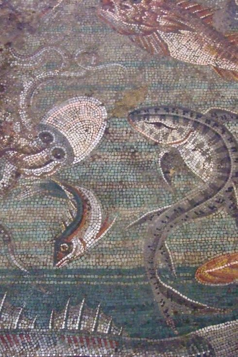 Mollusk MosaicsMarine Life Mosaic from House viii in Pompeii demonstrating the vermiculatum technique (ca. 2nd century BC)