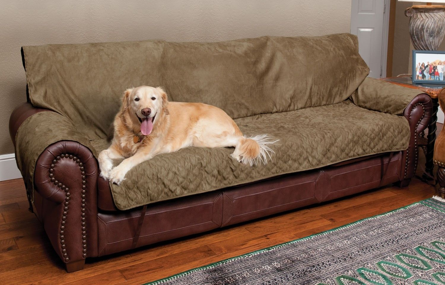 Best Sofa Cover Pets