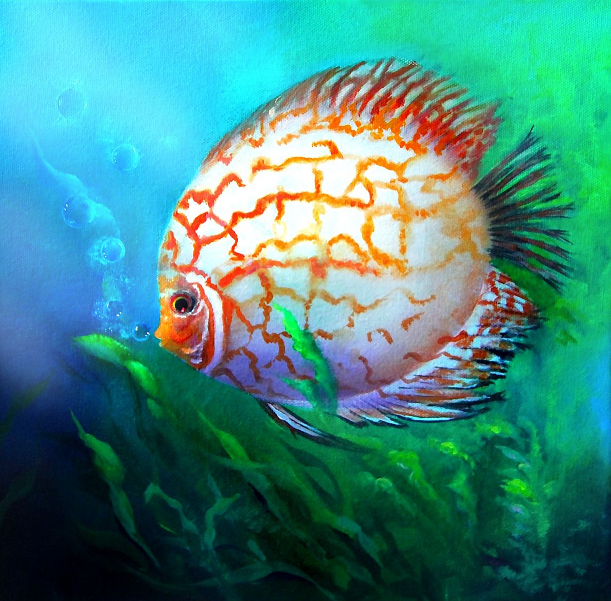 How to paint a discus fish in acrylic paintings for for Best beginner fish