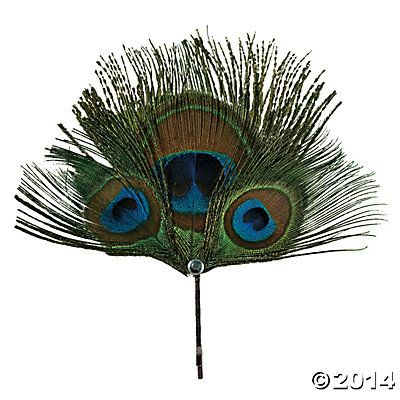 Natural Peacock Feathers - Oriental Trading
