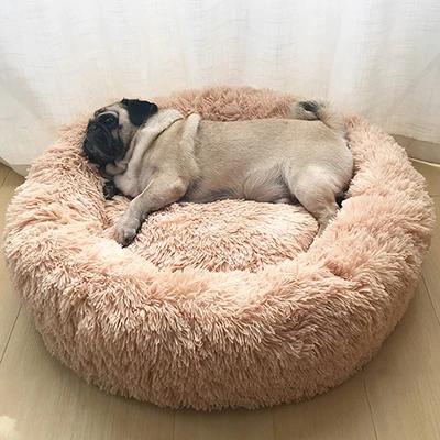 Petsmart Round Plush Cat/Dog Bed Animaux, Belles images