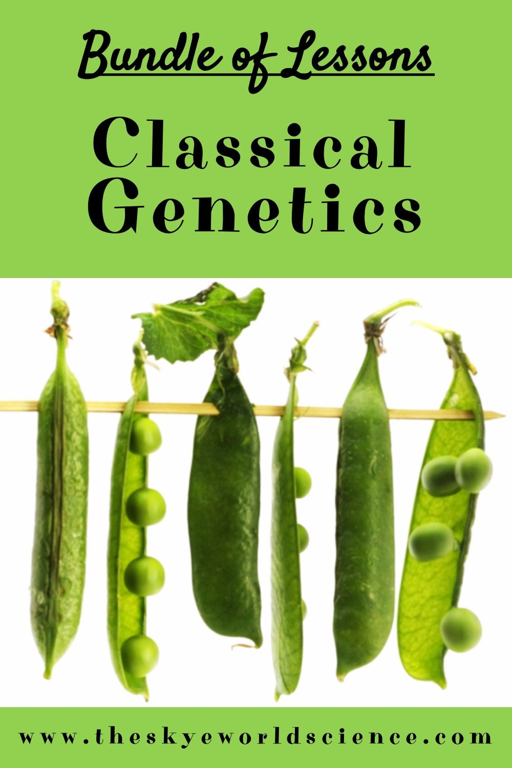 Bundle of Lessons Classical and Heredity