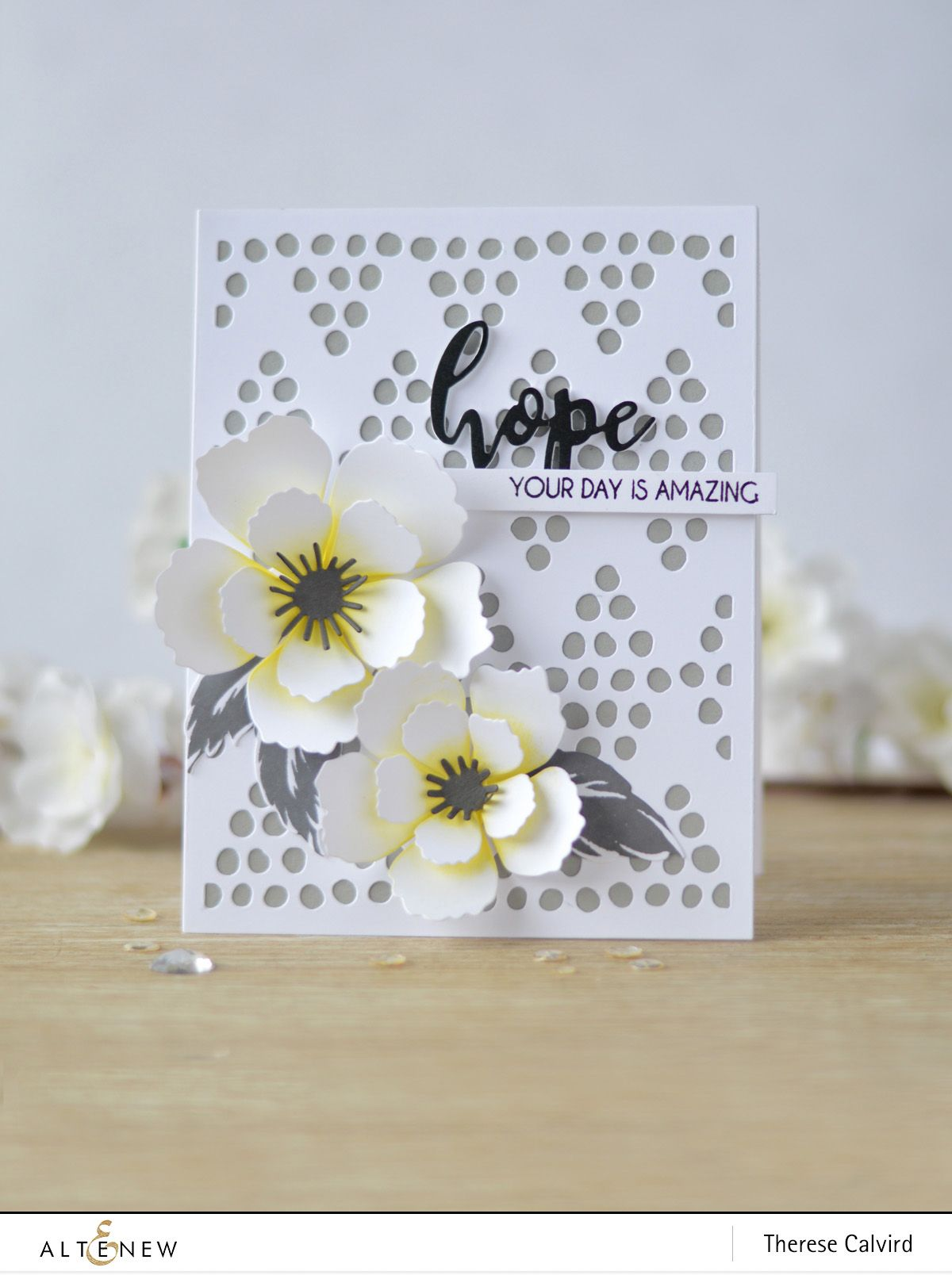 Video altenewus th anniversary blog hop day giveaway card