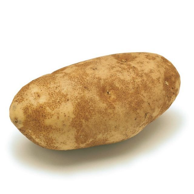 I post pictures of potatoes daily   FOLLOW @daily.russet for daily potato posts   #potato...  I post pictures of potatoes daily   FOLLOW @daily.russet for daily potato posts   #potato #daily #russet #russetpotato #coolpotato #cool #potatoes #dailypotato #root #roots #plant #plants #food #fries #frenchfries #russetpotatorecipes