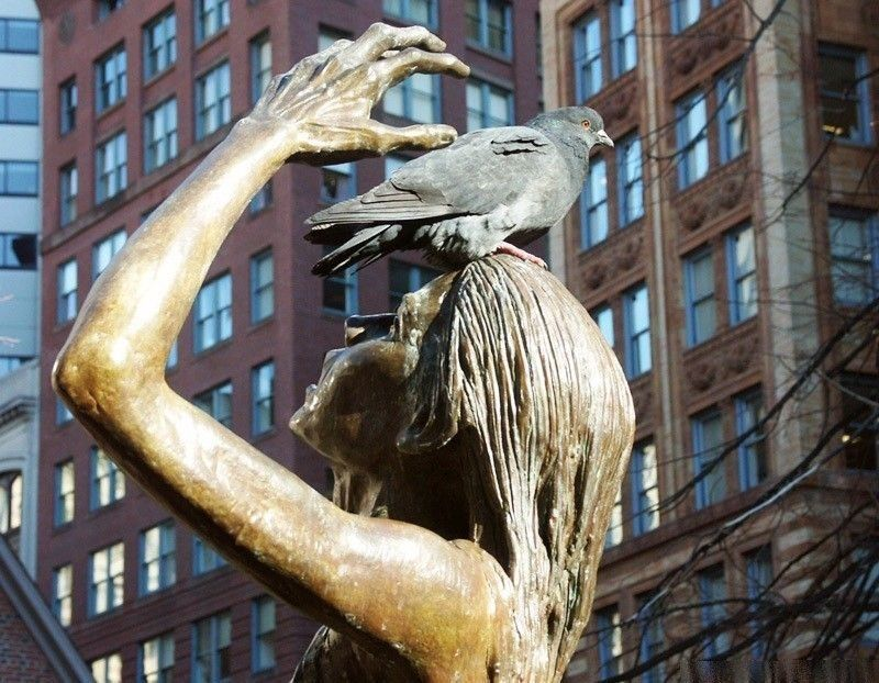 SOMEDAY YOU ARE THE STATUE SOMEDAY YOU ARE THE PIEGON