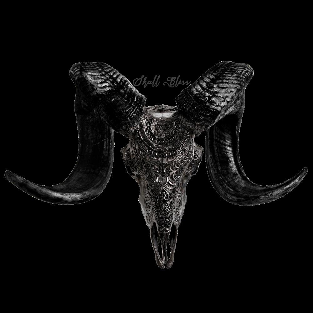 Bighorn Sheep Ram Skull Replica Free Shipping Ram Skull Sheep Skull Skull Art