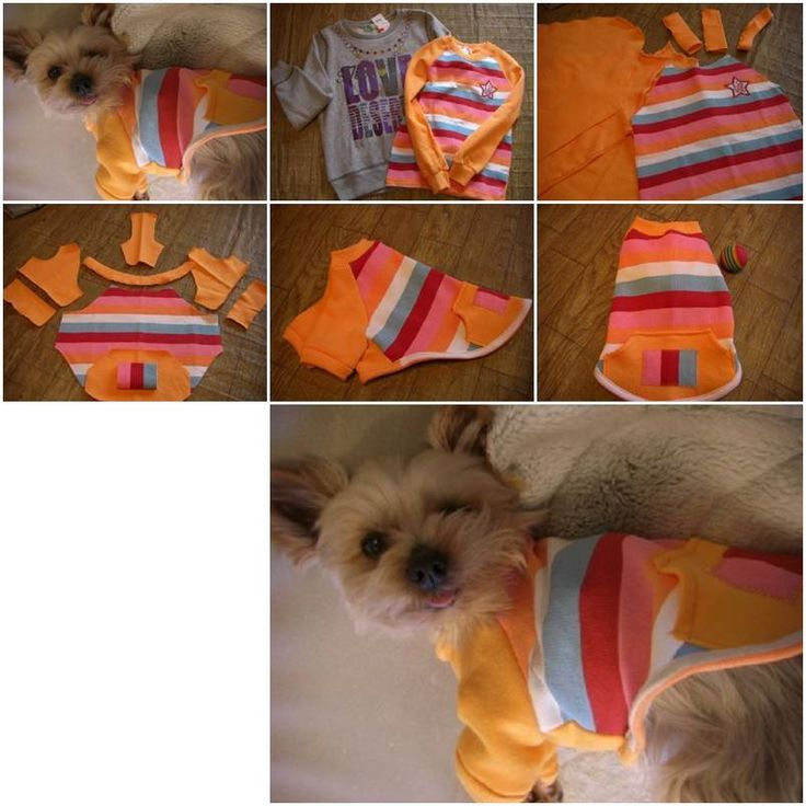 How to make sweater dog clothes step by step diy tutorial