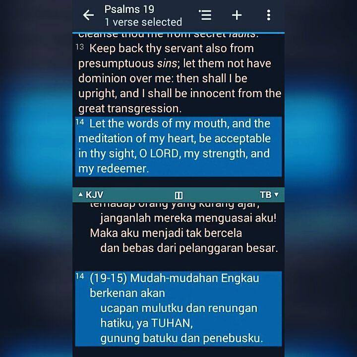 Palms 19:14 #BibleVerseOfTheDay #Monday #GodBlessYou  by thatbandchica http://ift.tt/1KAavV3