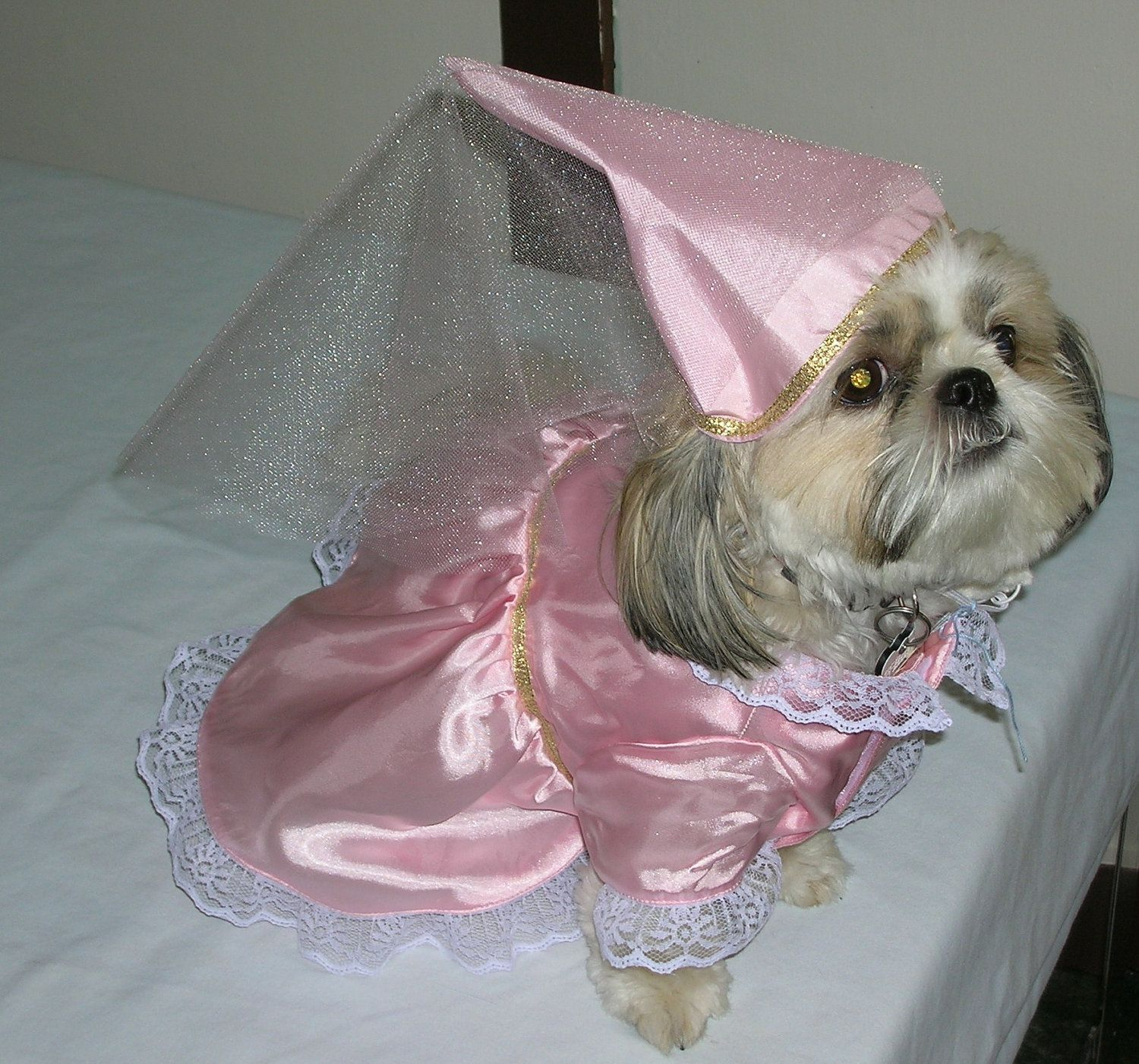 Princess Dog Costume. $35.00, via Etsy.